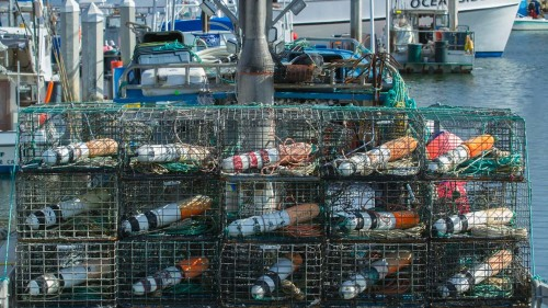 LOBSTER-CAGES-BOATS-OCEANSIDE-SAN-DIEGO-CA