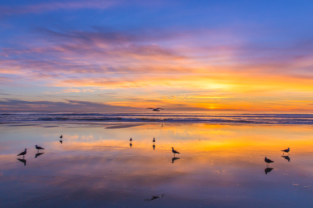 SUNSET-NORTH-COUNTY-SAN-DIEGO-CA