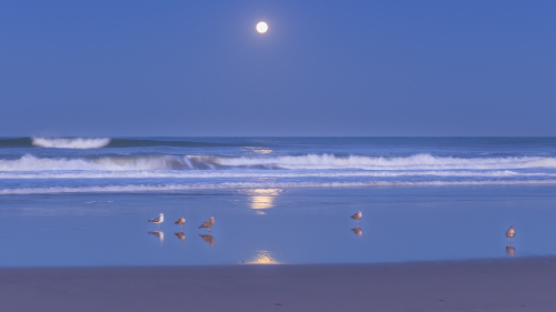 MOONSET-NORTH-COUNTY-SAN-DIEGO-CA