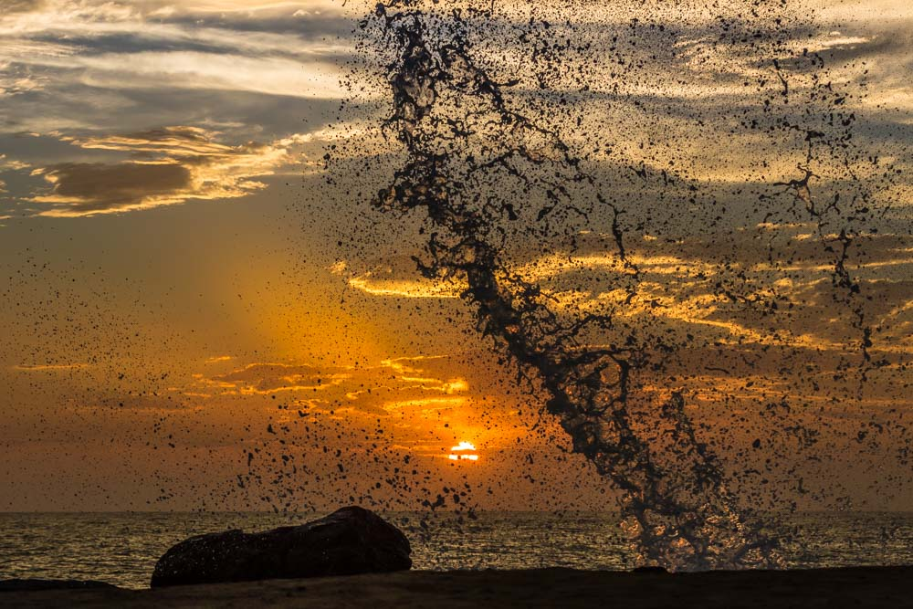 SPRAY-SUNSET-NORTH-COUNTY-SAN-DIEGO-CA
