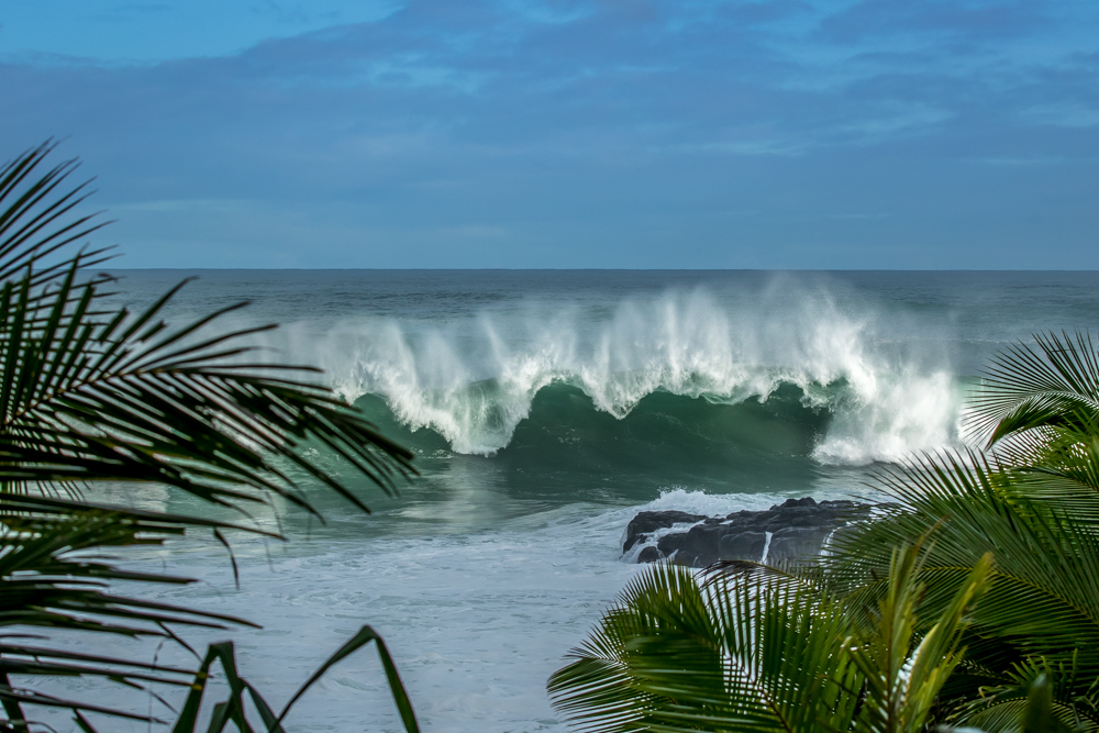 Wave-Hawaii