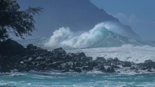 Wave-Hawaii