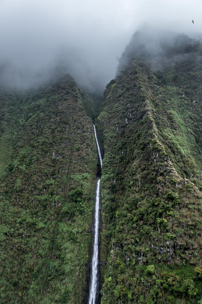 Waterfalls-Bird-Hawaii