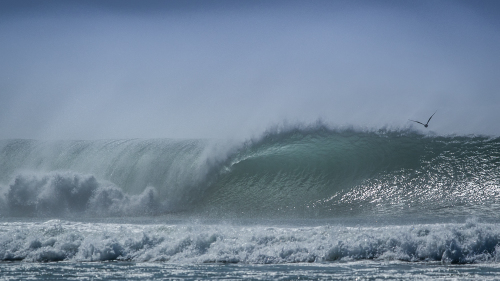 WAVE-OFFSHORE-WINDS-NORTH-COUNTY-SAN-DIEGO-CA
