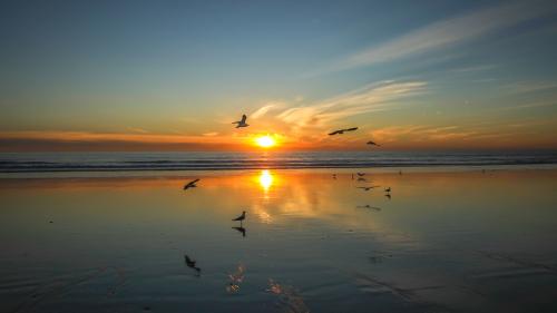 SUNSET-SAN-DIEGO-NORTH-COUNTY-CA